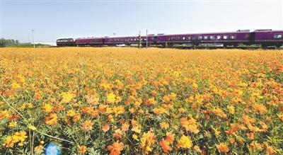 秦皇岛山海旅游观光铁路开通