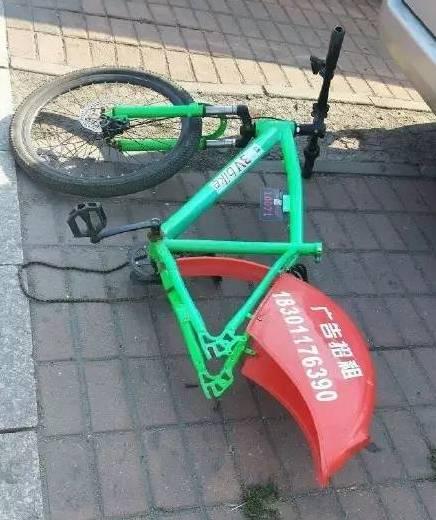 秦皇岛你这么美 却不适合共享单车!