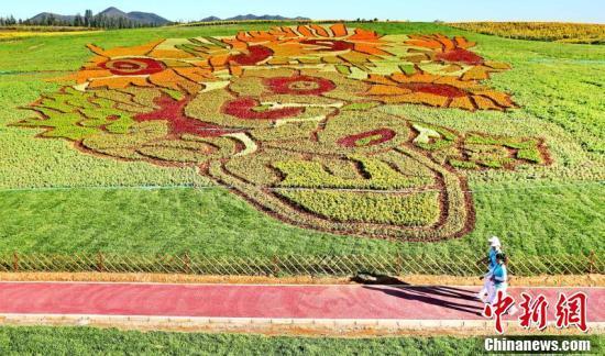 占地40亩的梵高名画亮相秦皇岛