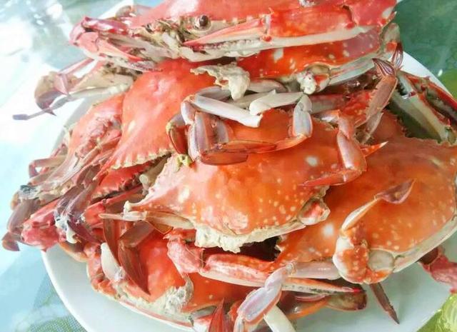 秦皇岛必吃的十道海鲜 好吃到流泪